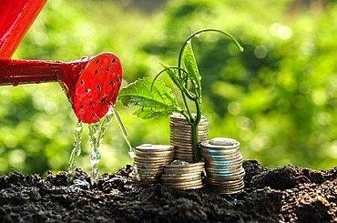 Přehledně: Zájem lidí o udržitelné investování roste. Na co si dát pozor?